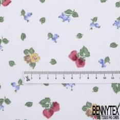 Jersey Coton Imprimé Petite Fleur Fruit Rouge fond Ecru