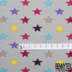 Jersey Coton Elasthanne Imprimé Etoile Multicolore fond Perle