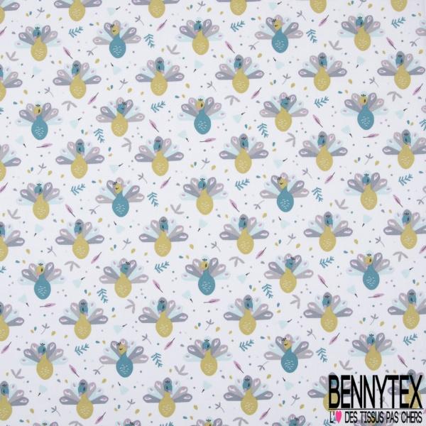 coton imprimé motif petits paons bleu canard et vers anis Fond blanc avec des petites plumes volantes
