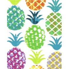 Coton Enduit Impression Motif Pinya Multicolore