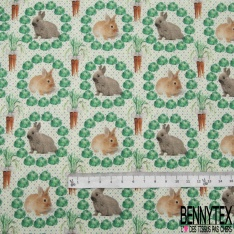 Coton imprimé digital motif lapins beige et gris carottes oranges et laitues vertes Fond blanc à pois gris et vert