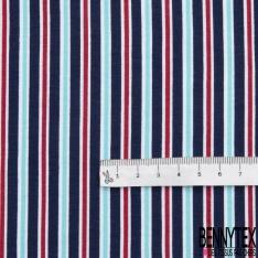 Jersey Coton Elastahanne Imprimé rayures multicolores Fond bleu marine