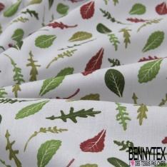 Coton imprimé motif feuille de salade Fond gris clair