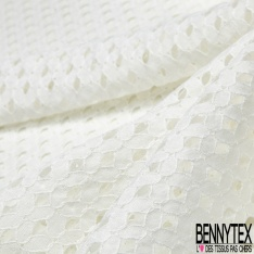 Dentelle Style Broderie Anglaise Ivoire