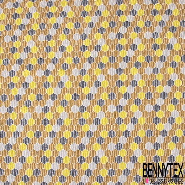 Coton imprimé Thème Cactus Figue de Barbarie Aquarelle Multicolore fond Blanc