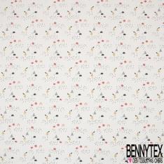 Coton imprimé Pomme et Poire Stylisées fond Blanc